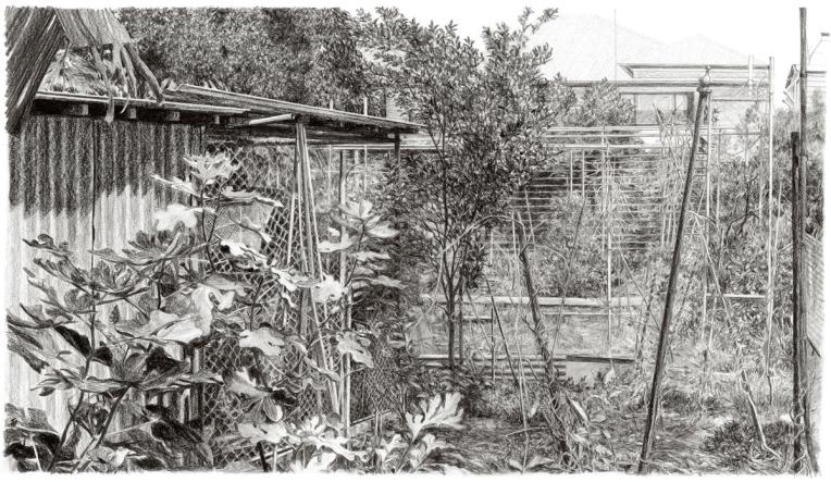 Maria's Garden_1200
