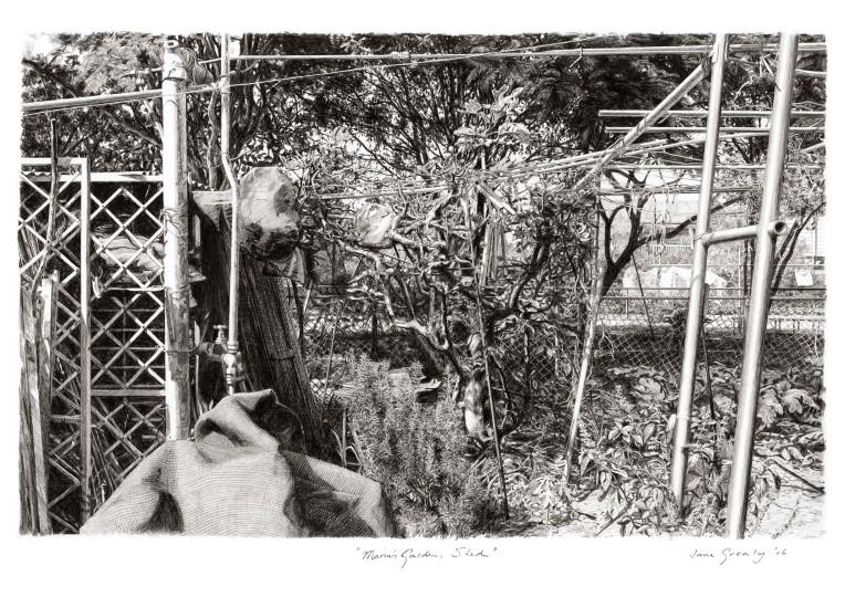 maria's garden, shed-a4